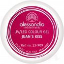 alessandro Colour Gel 909 Juan\'s Kiss 5g