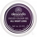 alessandro Colour Gel 913 All Night Long 5g