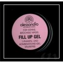 alessandro Fill UP Gel  (3 g / 2,60 ml)